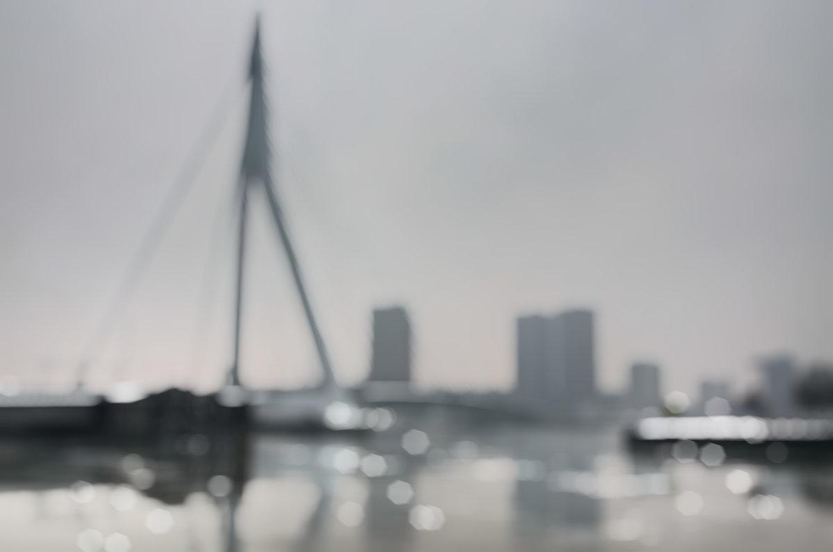 erasmus bridge rotterdam